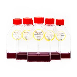 PIKA FastOrange Yeast Enrichment Bottles