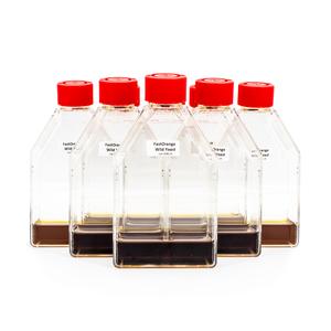 PIKA Fast Orange Wild Yeast Enrichment Bottles